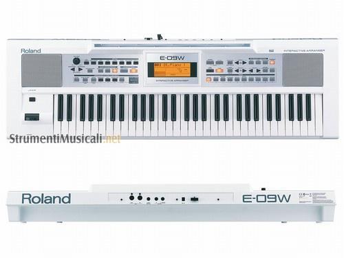 Рабочая станция Roland E09W