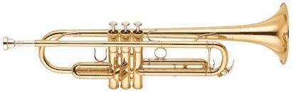 Труба Bb профессиональная Yamaha YTR-6345G